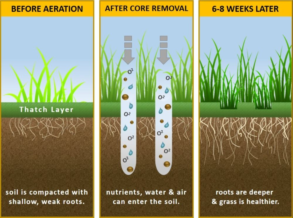 Soil Aeration Graphic